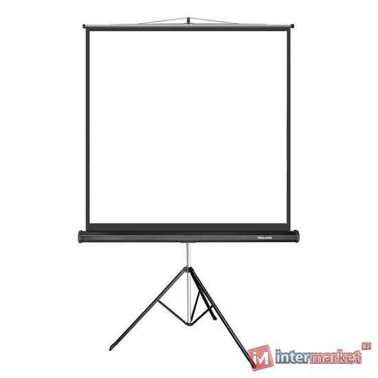 Проекционный экран, Deluxe, DLS-T203x, На штативе, 203x203, Matt white, Чёрный